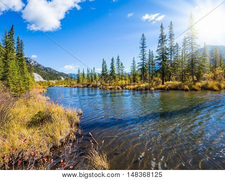 Concept of ecotourism. Beautiful Lake Vermilion in the mountains of Banff National Park. Autumn forest, mountains and lakes. The Canadian province of Alberta