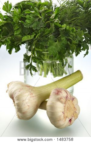 Juicy Fragrant Parsley And Garlic