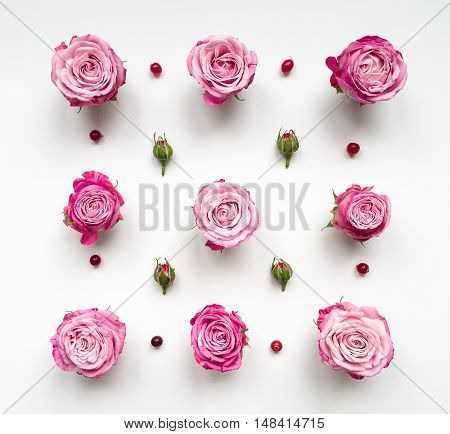 Decorative pattern with pink bright roses buds and berries on white background. Flat lay top view view from above