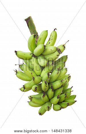 green banana isolated on white background / banana organic
