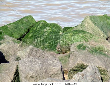 Green Rocks At Sea
