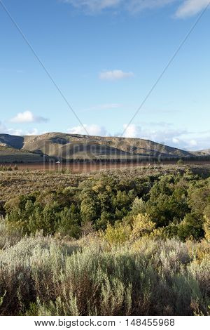 Mountain - Haarlem in the Western Cape province of South Africa.