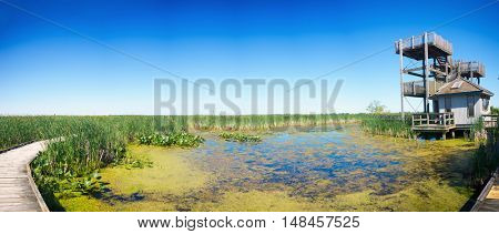 Panoramic view of lookout at Point Pelee National park in Ontario, Canada