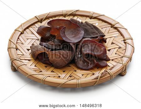 fresh wood ear mushrooms isolated on white background