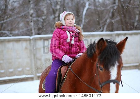 Portrait of little rider in winter clothes sitting on horseback at the equestrian site in front of trees