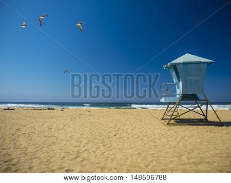 Life Guard Rescue Hut at beach / California, pelicans flying high above