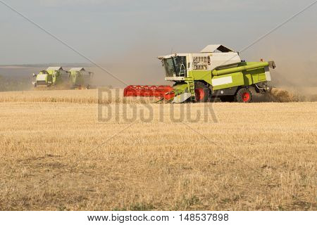 Green combine working on the wheat field
