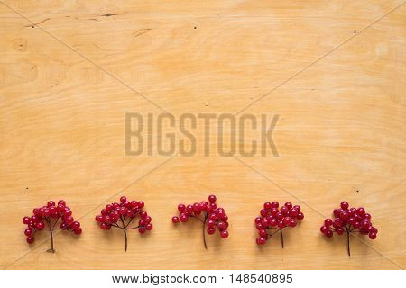 Red berries of viburnum placed in a row on a wooden background.