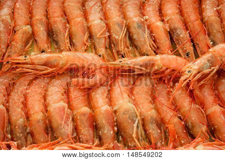 Tray of shrimp doused in sauce ready to bake