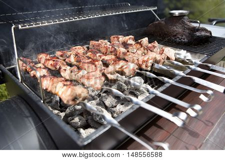 Closeup of shashlik on a barbeque grill outdoor
