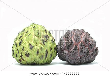 Green and purple custard apple with white background.