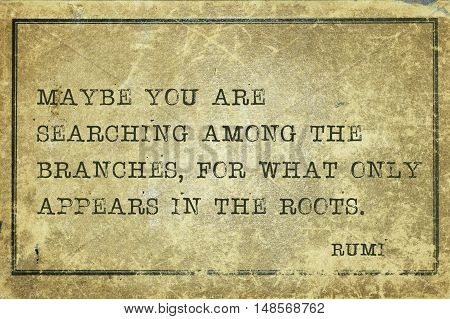 Branches Or Roots Rumi