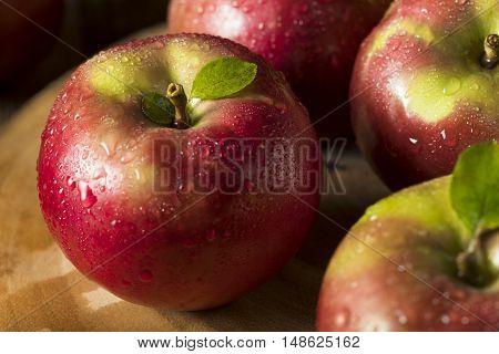 Raw Organic Red Mcintosh Apples