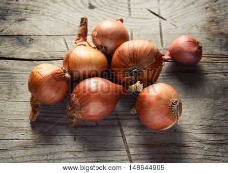 Onions On Rustic Wood Background