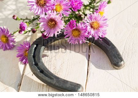 Horseshoe with asters on wood for good luck