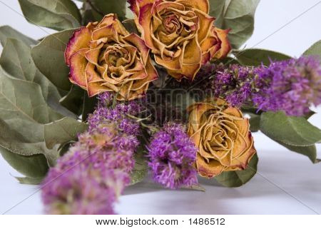 Dried Bouquet