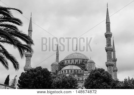 The Blue Mosque (Sultanahmet Camii) Istanbul Turkey. Monochromatic picture.