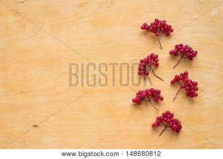 Red berries of viburnum placed in vertically on a wooden background.