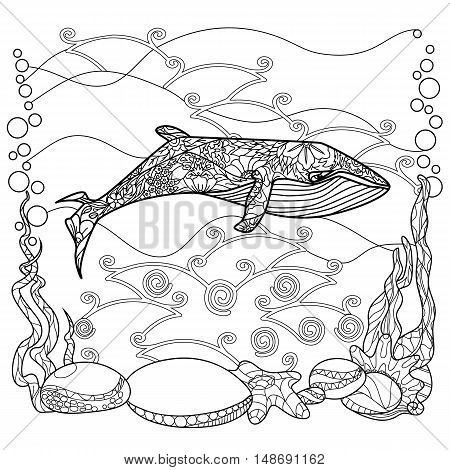 Vector illustration of a whale. Vector monochrome coloring page. Contour drawing in Zentangle style. Illustration for coloring book. Stock vector.