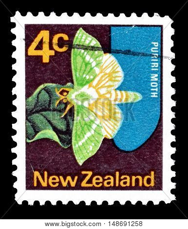 NEW ZEALAND - CIRCA 1970 : Cancelled postage stamp printed by New Zealand, that shows Puriri moth butterfly.