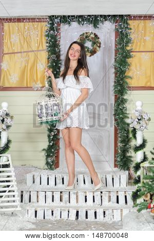 lovely woman with elegant style standing near door of house sham and holding birdcage with Christmas toys, smiling