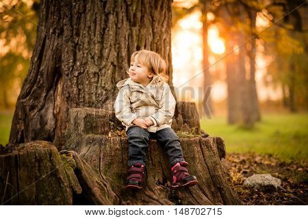 Small child with satisfied expression sitting on tree stump at sunset