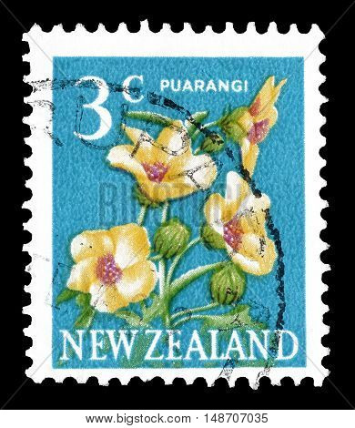 NEW ZEALAND - CIRCA 1967 : Cancelled postage stamp printed by New Zealand, that shows Puarangi flower.