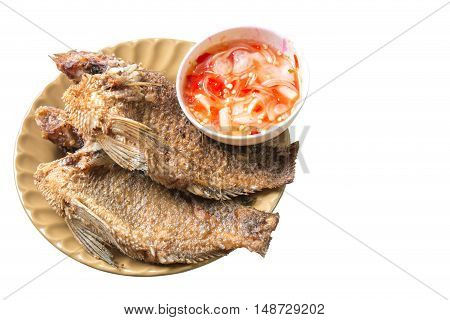 The gourami fry put dishes isolated on white background.