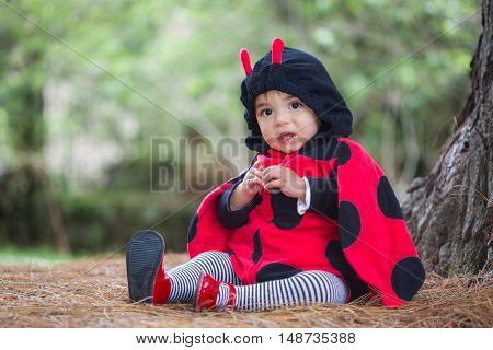 Little baby girl wearing a ladybug costume
