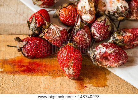 Moldy fruit, Rotten strawberries on wooden background