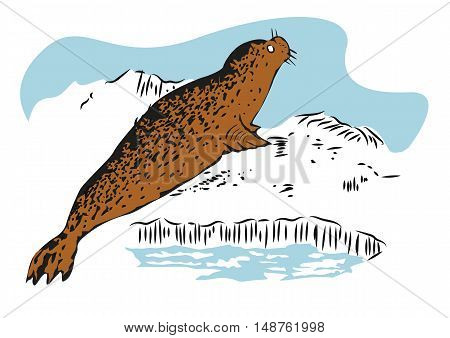 color sketch of a fur seal resting on ice. Hand drawn illustration