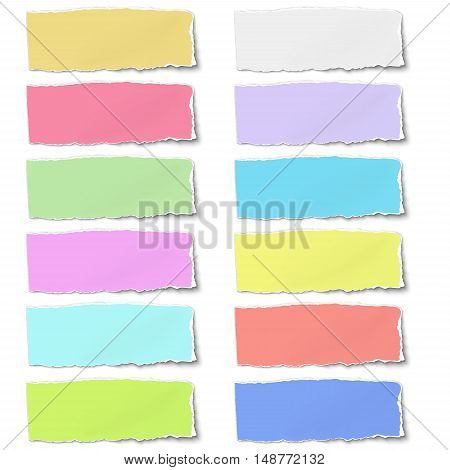 Colour oblong paper tormn on isolated white background