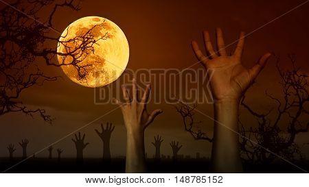 Halloween Concept Background In Dark Style