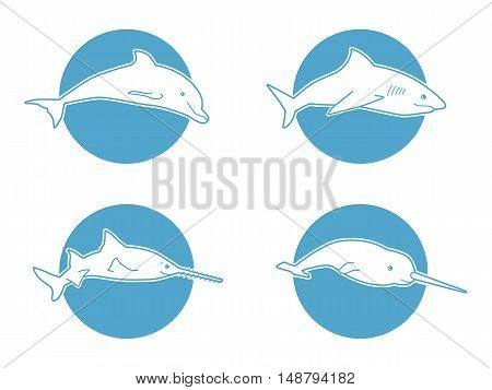 Set of Blue flat logos dolphin, shark fishsaw and narwhal for company and business. Logotype of tourism, ocean view resort resort or boutique hotel by the sea or ocean. Icon of animal jumping isolated.