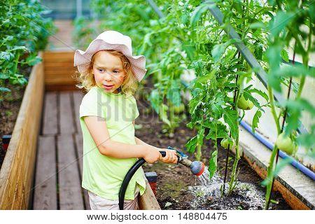 Gardening - little girl watering plants in glasshouse