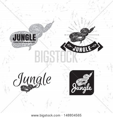 Vector logo set with Boa Constrictor snake. The Boa snake as main element of logotypes