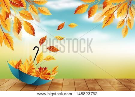 Autumn background with umbrella flying fall leaves and blue sky