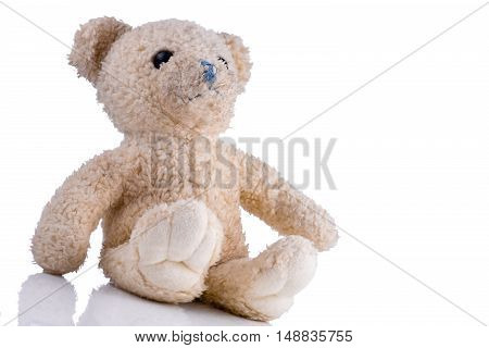Dirty toy bear sitting isolated on white background