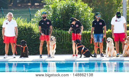 Rescue Demonstration With  Lifeguard Dogs.