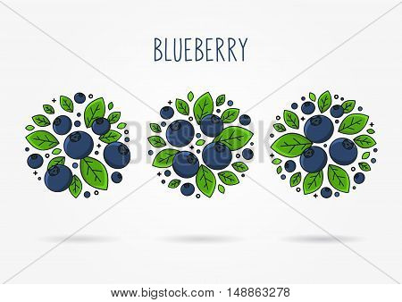 Blueberry line art vector illustration. Blueberry round labels creative concept. Graphic design for poster banner placard. Template layout with text and berries.