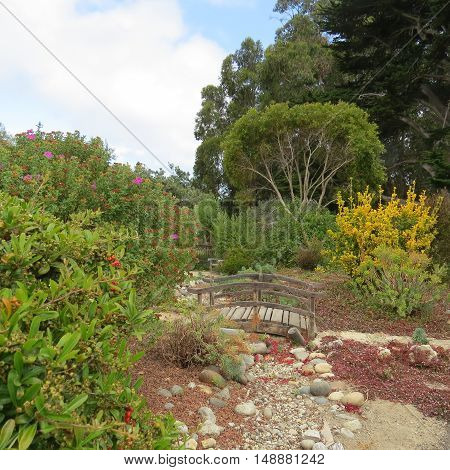 This is an early morning image of a  church garden near the coast in Carmel, California.