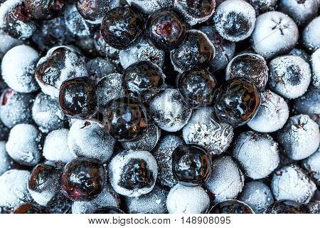 Frozen aronia berries in a bowl macro shot