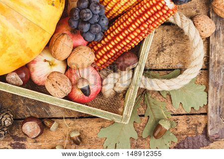 Thanksgiving Day: Tray Of Different Vegetables