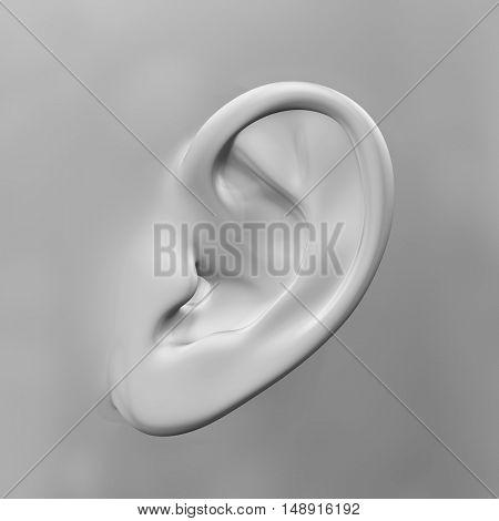 3D render of a close up of an ear