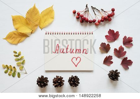 Autumn yellow and red leaves, small red apples, rennet, cones, and a notebook on a white board. The word Autumn is written in the notebook.