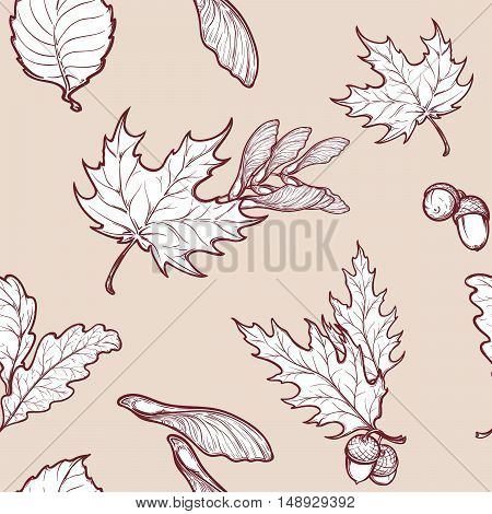 Autumn maple leaves and seeds. Detailed intricate hand drawing. Chaotic distribution of elements. Seamless pattern. EPS10 vector illustration.