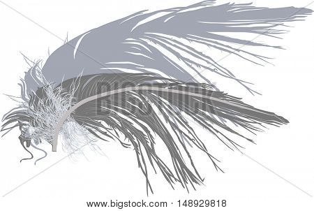 illustration with grey feather isolated on white background