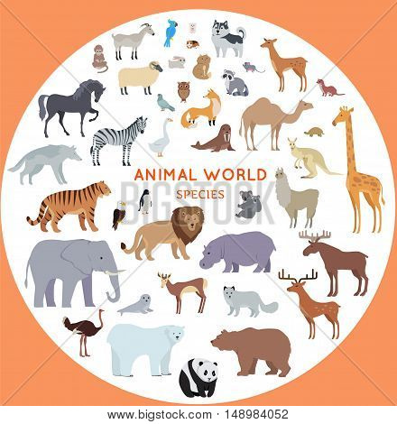 Set of animal species vector. Flat style. Big collection of mammals of different geographical latitudes and continents. Wild and domestic herbivores, predators, birds illustrations. Isolated on white.