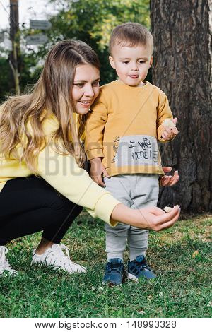 Woman with her son feeding pigeons in a park. Boy with mom feeds pigeons
