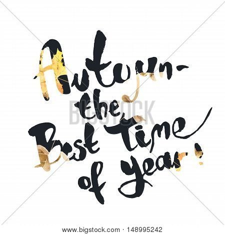 Autumn is the best time of year. Seasonal inspirational phrase. Suitable for use on T-shirts, postcards, posters. Vector illustration